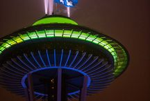 Seattle seahawks / by Kelly McMeen