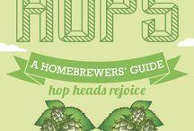 Beer / Homebrew and beer