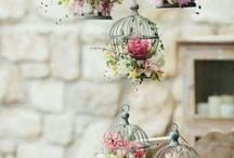 french birdcage party decor