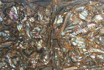 Abalone Tile Collection
