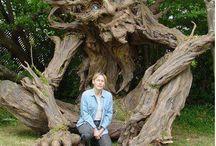 sculture su alberi