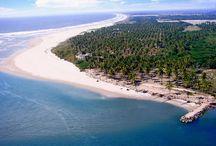 Playas Sinaloenses