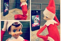 Chippy Buddy The Elf / by Lyn Kostus