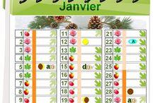 calendrier jardin