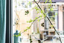 Lubies florales et vertes