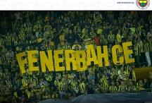 Fenerbahce / My Turkish Football Team / by Sarah F.