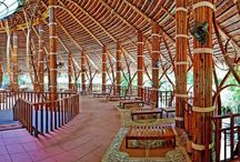 Building bamboo