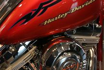 Harley Davidson York  / by Buffy Andrews