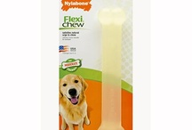 Dog Toys/Chews - Moderate Chewers / by Nylabone Products