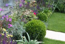 London Artist's Garden