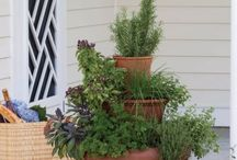 Simple Gardening Tips / I love plants! Most of them don't love me though. So here's a collection of tips and tricks from someone without a green thumb.
