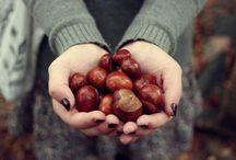 I love fall (& Halloween) / by Rocío González