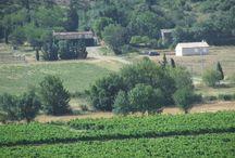 Hébergement Corbières / Gite équestre et rural pouvant accueillir 8 personnes Chambre d'hôtes  www.leplo-outfitter.com