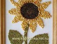 képek termések