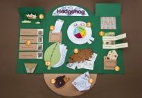 Hedgehog Lapbook for Preschool, Kindergarten and Elementary School Children / Each lapbook from KiGaPortal.com teaches children in early childhood about a different animal. Perfect for homeschooling, classroom activities and enrichment programs! Also available in German and Italian! / by KiGaPortal