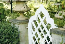 Gardens / by Judy Henriques-Evans