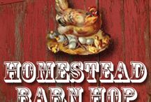 homesteading ideas / by Mary Stephens