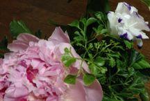 Flower arrangement / My works