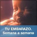Embarazo ❤️