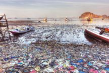 Environmental Issues - BTO