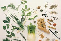 gyógynövények