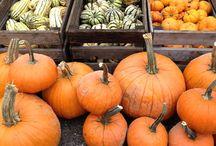 Fall at Ramsey Farmers Market