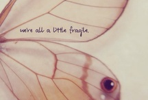Fragile Butterfly / Sometimes the things you find in the dark are beautiful. The stars won't shine in the light.