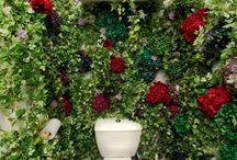 Mur végétal stabilisé | Stabilized or Preserved plant