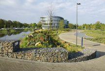 Gebouw en tuin / Het kantoor is ontworpen door Maas Architecten gebouwd door Aan de Stegge. De tuin is door Nico Wissing ontworpen en aangelegd.
