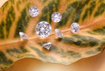 Diamond Photogrphy / Gloriousstudio Monsoon's almost here, nothing better than a pure real shining Diamond - all marvelous little sunshines that can adorn body. Nature can show the reality but diamond can speak the inner beauty. .‪#‎diamonds‬ ‪#‎diamond‬ ‪#‎realdiamond‬#photography#studiowork ‪#‎commercialphotography‬#studioshot ‪#‎stilllife‬#fancy#fancydiamond ‪#‎gloriousdiamond‬