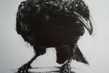 Blackbird / Charcoal