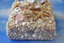 Deniz kabuklari