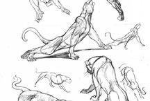 Zwierzaki rysunki
