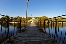 Daffin Park, Savannah, Ga / by Dan Hernandez