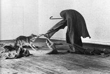 Performances - Joseph Beuys