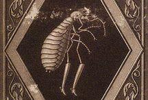 Illustrations-Hoffmann, ETA (1776–1822)