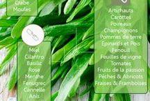 aliments bienfaits et  descriptions