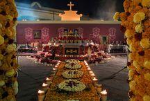 Altar de Muertos / by Mache Gamboa