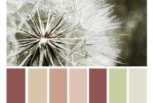 ♡ My Color Palettes