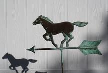 Horse / by Deborah Goulekas