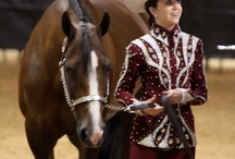 Western horse/human outfit's