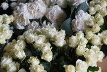 Beautiful Flowers / Roses, hydrangea, lisianthus, peonies...