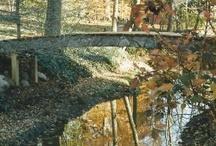 Pond Bridges