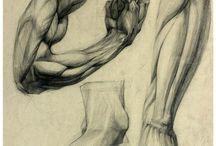 руки ноги