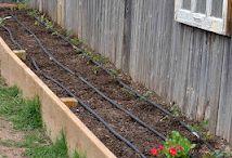 садовые идеии