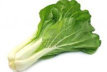HP 0856-4347-4222, Benih Sawi Murah Berkualitas , Bibit Sawi Manis Unggulan / Benih Sayuran, Benih Sayuran Murah, Benih Sayuran Organik, Benih Sayuran Import, Benih Sayuran Unggul - HP 0856-4347-4222 -