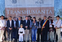 """""""Transhumance 2013"""" Project / """"Transhumance 2013""""  is an international project, organized mainly by the ''Pasterstwo Transhumancyjne'' Foundation of Poland and the """"Transhumanța"""" Association of Romania."""