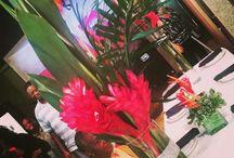 Crystal Marie Events Presents: Havana Nights / 85th Birthday Dinner