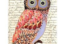 Owls / by Lissie Dennison