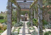 Mediterranean garden vibes